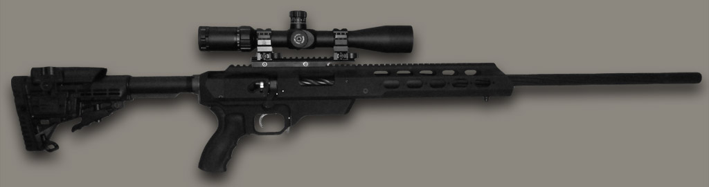Tactical AR Style Custom Muzzleloader