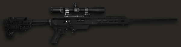 Tactical Muzzleloader with AR Stock