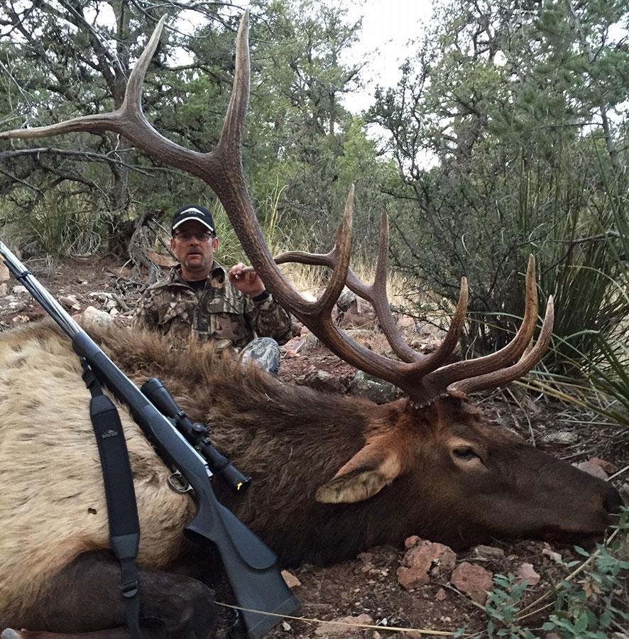 John's Elk